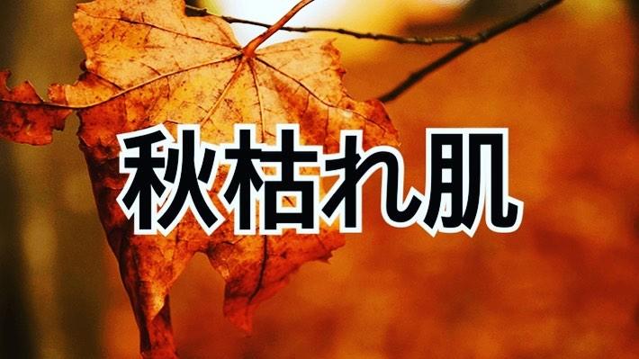 """10月になり、日に日に秋らしい風を感じるようになりました。蒸し暑い夏もやっと去り、過ごしやすい季節の訪れを感じさせてくれますね。  しかし、そんないまの季節を侮ってはいけません!実は夏に受けたダメージは、これから徐々に肌に現れてくるのです・・・!! それはまさに、トラブルを招く""""秋枯れ肌""""。 そして、それを放置すると未来のあなたの肌に大きなダメージが!。 """"秋枯れ肌""""にならないよう、初秋のいまから適切なケアで対策をしましょう! 秋枯れ肌とは? ️カサカサ ️スカスカ ️ボロボロ  夏のダメージが原因で秋に出てきてしまう肌トラブル のこと。 肌がごわつく、 かさつく、 たるむ、 化粧ノリが悪い、 小ジワが気になるなど、 """"秋枯れ肌""""のトラブルは数多くありますが、 その中でも特に注意したいのは肌の「ごわつき」 放っておくと悪循環に陥って冬までその肌状態を引きずることもあります。  さらに、 実は 肌の老化リスクは一年を通して️秋がピーク️ 。 秋のスキンケア次第で今後1年間の美肌が決まるといっても過言ではありません。 つまり、 1年で最も徹底したケアが必要なのが、 まさに今 なのです。  紫外線は年中降り注いでいます。 夏は意識的に日焼け止めをつけていたけれども、 秋になって涼しくなると対策を疎かにしてしまっている方も多いのでは? 紫外線は肌の乾燥を招くだけでなく、 """"秋枯れ肌""""の原因のひとつである角質肥厚を起こし、 結果的にたるみを引き起こします 。  日焼け止めは年中つけて、 たるみケアを万全にしましょう!  秋はもっとも老化リスクの高い季節だといわれています。実際、9月ごろになると乾燥やくすみ、肌荒れなど老化のサインともいえる症状に悩まされている女性は約7割にものぼります。 秋に老化を進行させないためにしっかりとケアをすることが、一年の美肌を決めると言っても過言ではありません!  皮膚表面の角質層はラップ1枚の厚さ!表面が枯葉のようにガサガサ、ボロボロにならないように! 保湿と紫外線対策が必要"""